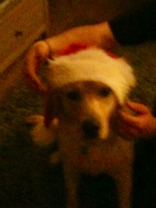 Santa Chester - Sorry was unable to airbrush out the hands.